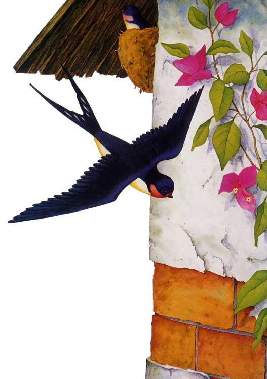 El jard n de los p jaros for Aves de jardin